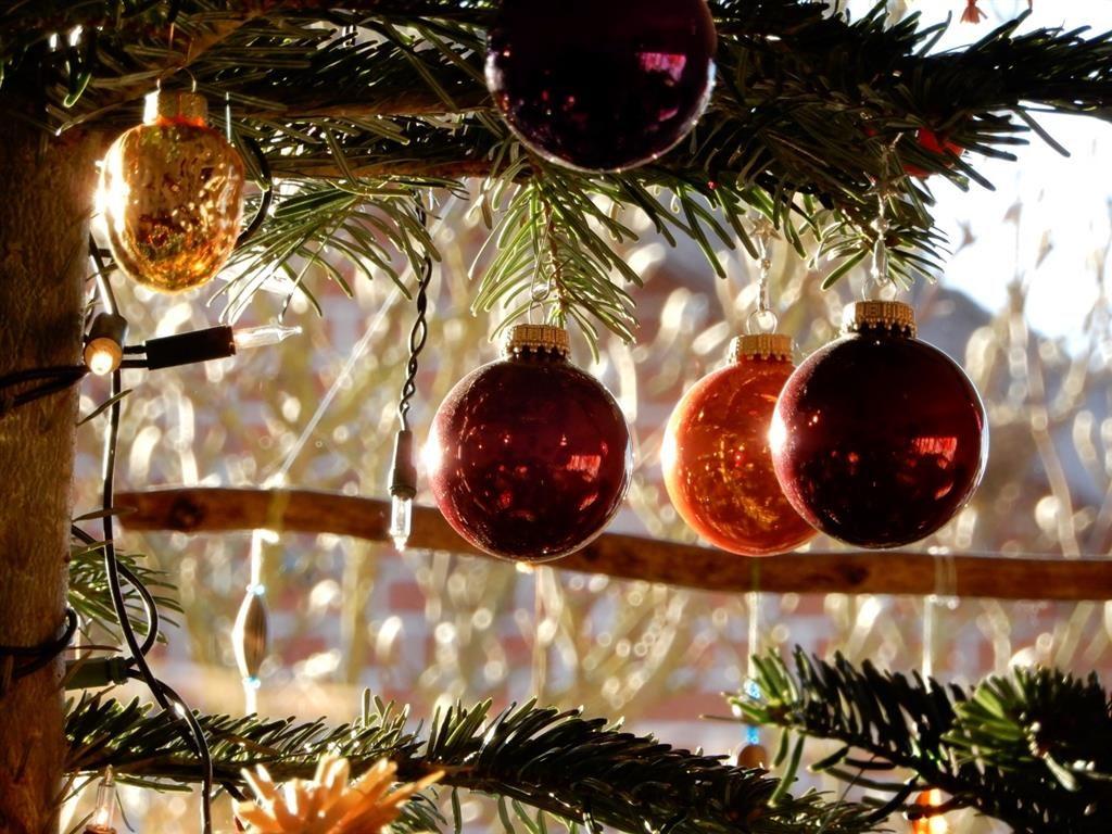 Frohe Weihnachten vom Dachprofi